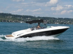 Sea Ray 240 SSE Motoryacht