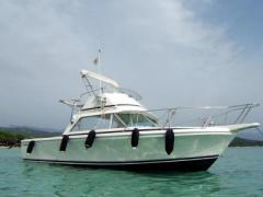 Bertram 26 Fly Fisherman natante Flybridge Yacht