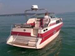 Chris Craft 266 Scorpion Pilotina