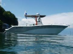 Sea Fox 256 CC Motor Yacht