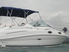 Sea Ray 240 Da- 08- 350 Mag Speedboot