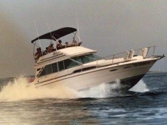 Sea Ray 340 Sedan Bridge Motoryacht