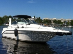 Sea Ray Modell: 290 Da Sportboot