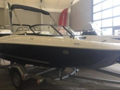 Bayliner Element E5 Sportboot