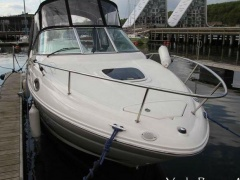 Sea Ray 245 Sundancer Sportboot