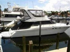 Sea Ray Sedan Bridge Yacht a Motore