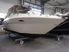Sea Ray 225 WE Daycruiser