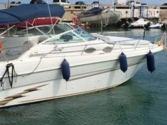 Sea Ray Sundancer 270 Sportboot