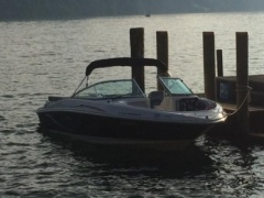 Sea Ray 205 SP Sportboot