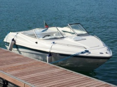 Wellcraft 200 Pontoon Boat