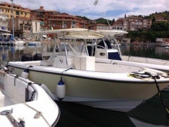 Edge Water 265 Cc Deck Boat