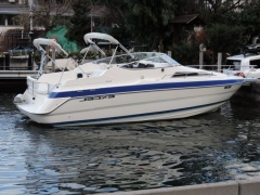 Wellcraft 26 SE Caminada Kabinenboot