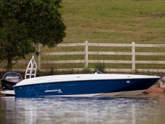 Bayliner Element E6 + 60 PS Sportboot