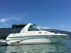 Sea Ray Sundancer 290 Motoryacht