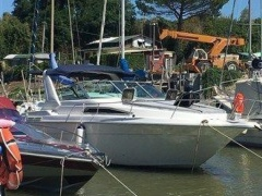 Sea Ray 280 Sportboot