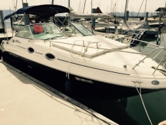 Sea Ray 255 Sundancer Motoryacht