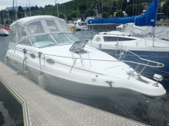 Sea Ray 250 DA Sundancer
