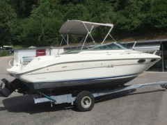 Sea Ray 220 OV / Occasione Sportboot