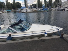 Sea Ray 190 Sportboot