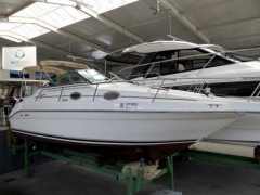 Sea Ray 250 DA Sundancer Sportboot