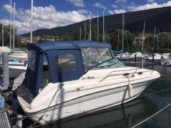 Sea Ray 240 Sundancer Yacht a Motore