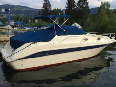 Sea Ray 250 DA Pilothouse Boat