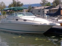 Sea Ray Motorboot EU Kat Kabinenboot