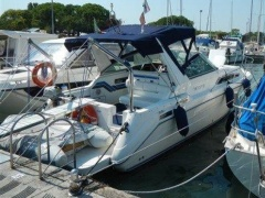 Sea Ray 270 Da Sportboot