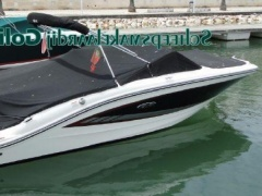 Sea Ray 19 Spx Barco desportivo