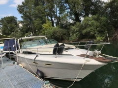 Sea Ray 300 Sun Cruiser