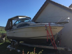 Sea Ray v 245 Kajütboot