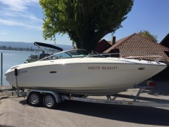 Sea Ray 210 Sun Sport White Beauty