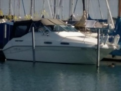 Sea Ray 230 DA LT Pilothouse Boat