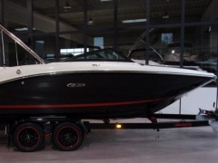 Sea Ray 190 SPXE -50 Jahre Boote Pfister Edition Sportboot