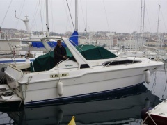 Sea Ray Boats 300 DA Sportboot