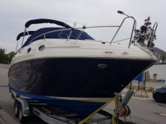 Sea Ray 255 Sportboot