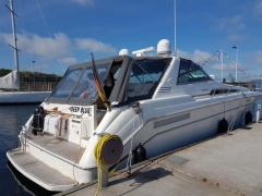 Sea Ray 500 Sundancer Yacht a Motore