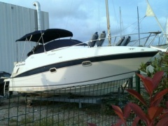 Four Winns 248 Vista 5.0 GI  DP Daycruiser