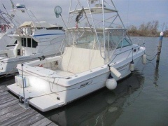 Boston Whaler 34 Defiance Yacht a Motore