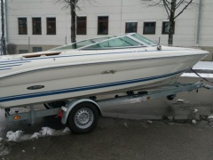 Sea Ray 185 200 Sr Daycruiser