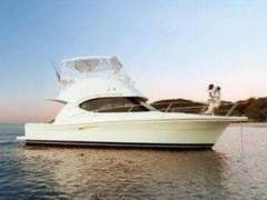 Riviera 33 Open Flybridge Flybridge