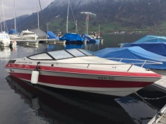Wellcraft Eclipse 197 Sportboot