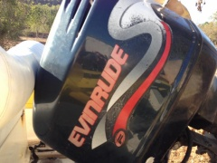Evinrude 225 Fitch Hors-bord