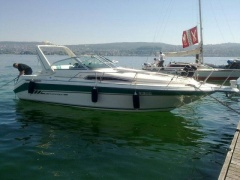 Sea Ray Star 290 DA Daycruiser