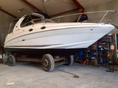 Sea Ray 315 Sundancer Sportboot