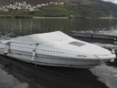 Sea Ray 200OV Sportboot