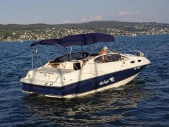 Regal 2550 LSC Motoryacht