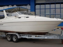 Wellcraft Martinique 2600 Daycruiser