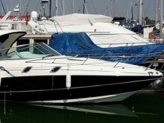 Sea Ray 305 Sundancer Yacht a Motore