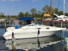 Sea Ray 250 DA Sundancer Kabinebåd
